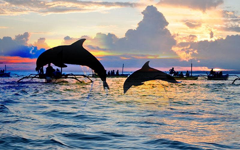 Lovina-Dolphin-Wacthing